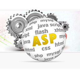 asp-development1